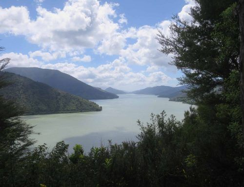 Queen Charlotte Drive y Picton